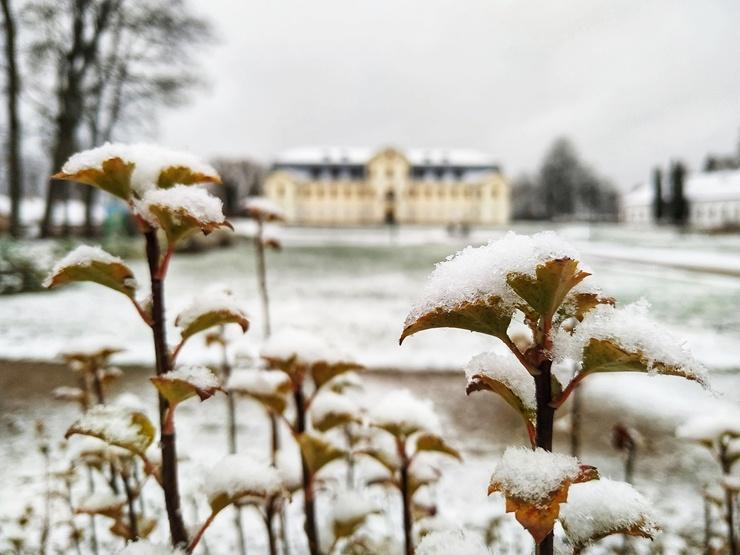 Krāslava  ietinas baltā sniega rotā. Foto: Inga Pudnika 294570