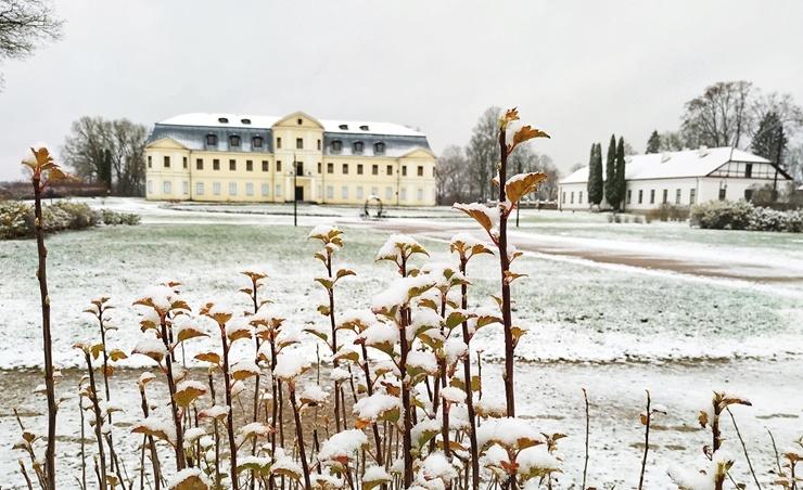 Krāslava  ietinas baltā sniega rotā. Foto: Inga Pudnika 294571