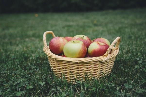 Ārlavciemā norisināsies ābolu