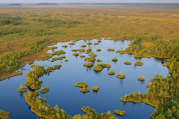 Alutaguses nacionālais parks ir jaunākais Igaunijā