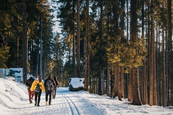Kā pareizi izvēlēties apģērbu pārgājienam ziemā?