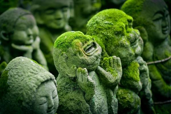 Raimonds Rozenfelds: Brauciens uz šarmanto Japānu